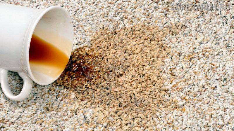 Как почистить ковролин в домашних условиях от запаха мочи