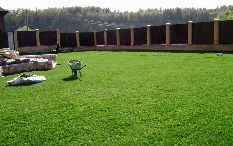 Подготовка участка под газон и посев травы своими руками 35